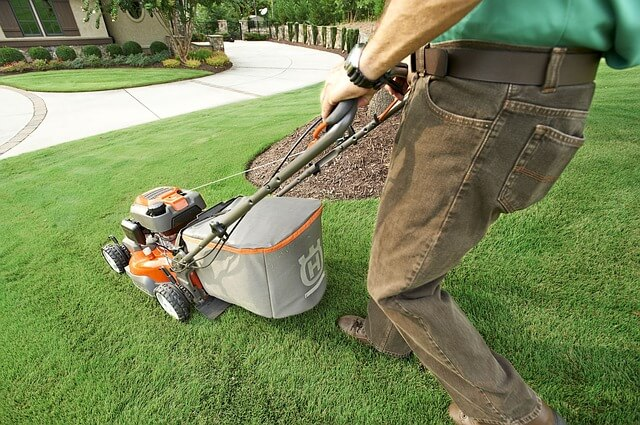 Best Rated Self Propelled Lawn Mowers 2019 reviews